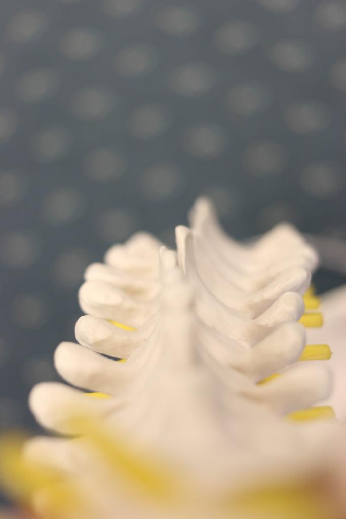 Manipulative-Physiotherapy